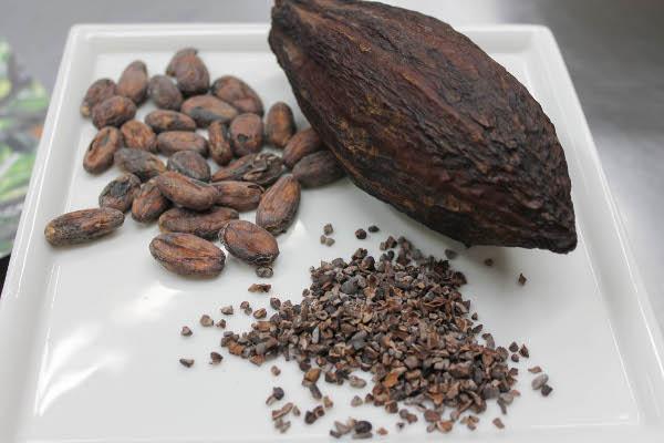 cocoa bean pod nibs