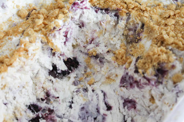 coconut blueberry pie ice cream