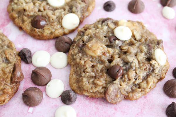 soft and chewy triple chocolate oatmeal cookie
