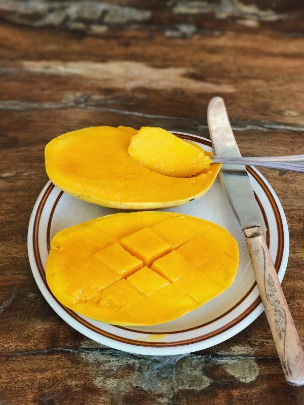 philippines mangoes