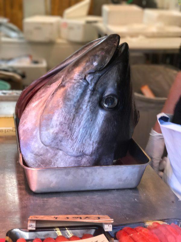 tuna head tsukiji